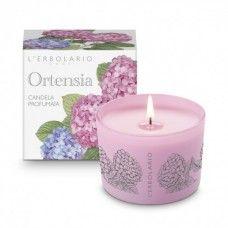 Ortensia illatgyertya - Rendeld meg online! Lerbolario Naturkozmetikumok http://lerbolario-naturkozmetikumok.hu/kategoriak/illatos%C3%ADto-termekek