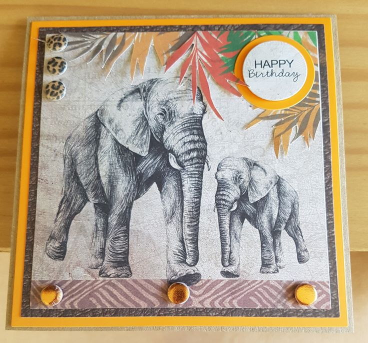 'Savannah' by Craftwork Cards. Made by Jane Compton
