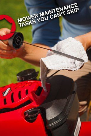 7 Lawn Mower Maintenance Tips you Can't Ignore This Summer.