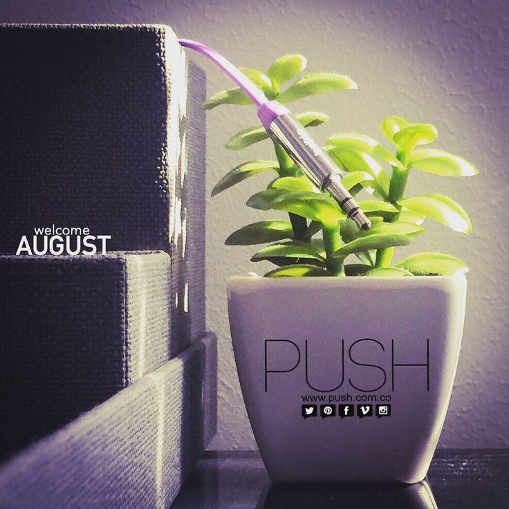 Bienvenido Agosto Push/ Somos Agencia de Publicidad, Productora de Contenido y Agencia de Talento/ + 3193610194 - info@push.com.co - www.push.com.co - Barranquilla, Colombia