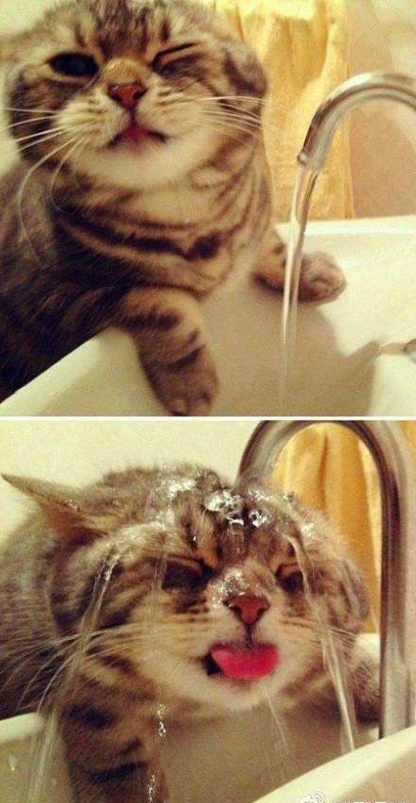 Le matin quand tu te laves la tronche !