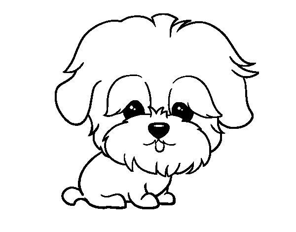Dibujos de Animales on Pinterest   Dibujo, Mars and Gatos