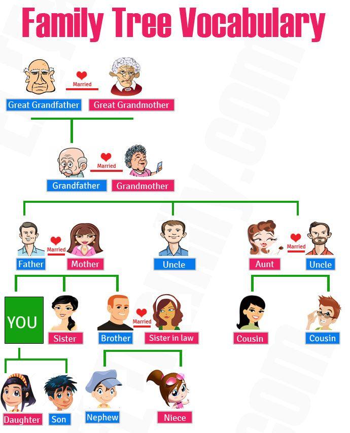 169 Kosakata Nama Anggota Keluarga Dalam Bahasa Inggris Beserta Artinya  http://www