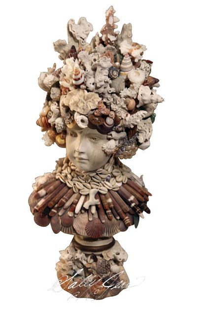 crazy for shell busts
