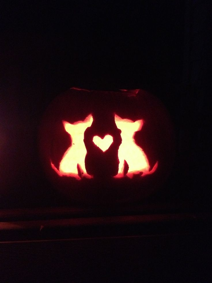 301 best pumpkins images on pinterest