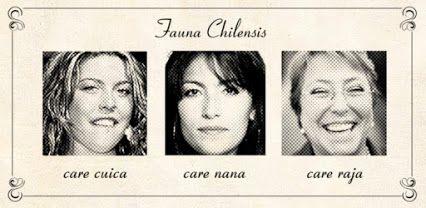 #CareCuica #CareNana #CareRaja