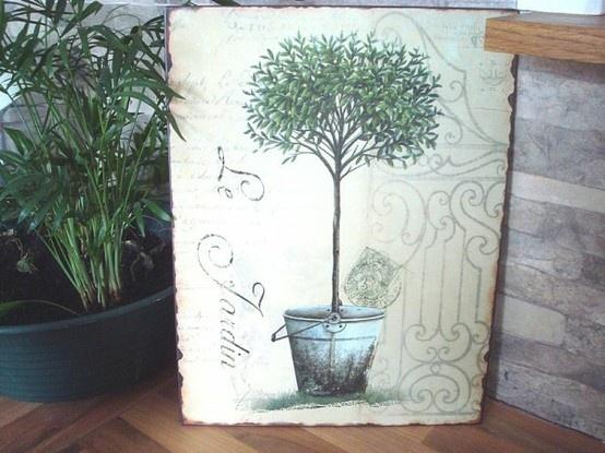 1000 id es sur le th me arbre olivier sur pinterest bibliotheque arbre stockage de porcelaine. Black Bedroom Furniture Sets. Home Design Ideas