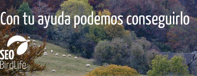 El Día Europeo de la Red Natura 2000 necesita tu voto para el Premio Ciudadano Europeo