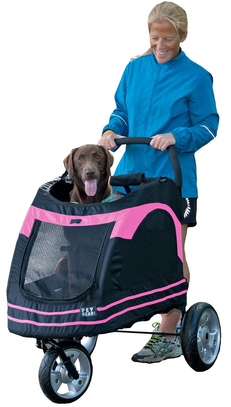 Amazon.com : Pet Gear Roadster Pet Stroller for Cats and Dogs, Black/Blue : Pet Carrier Strollers : Pet Supplies
