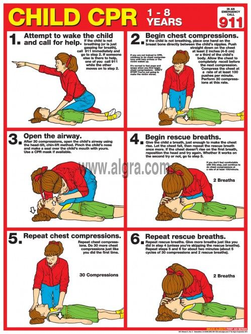 Bruce Algra's Child CPR Poster (years 1-8), updated for 2013, shows and explains how to perform Child CPR in a step by step - easy to follow six step process. Colorful illustrations and specific information show the necessary positions and explanations to perform Child CPR effectively and safely. This is a life saving wall reference for school nurses, classrooms, business, and safety related facilities.
