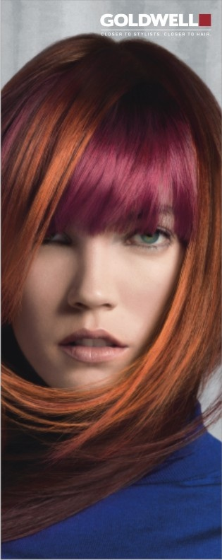 GOLDWELL COLORZOOM 2013 - Beautify Your Life!