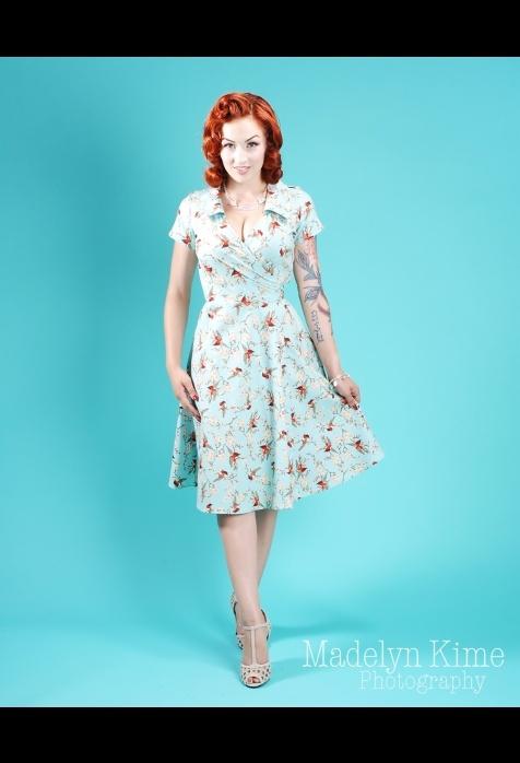 retro robin dress