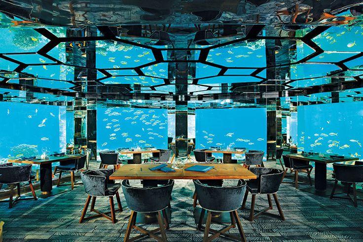 ТОП-16 подводных ресторанов