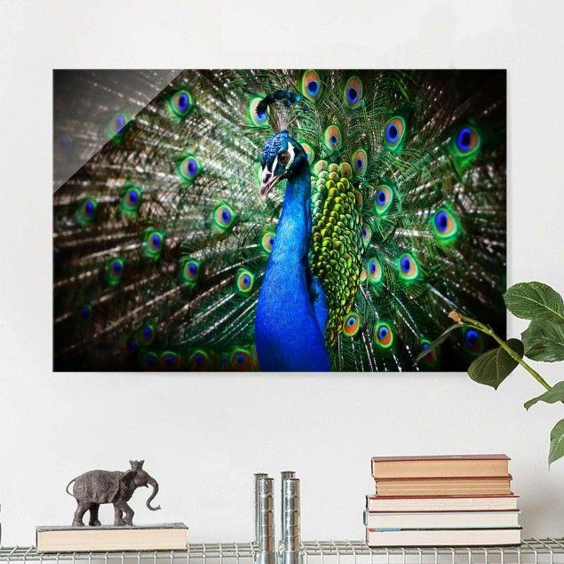 41 best Glasbilder Prints on glas images on Pinterest - glasbilder für die küche