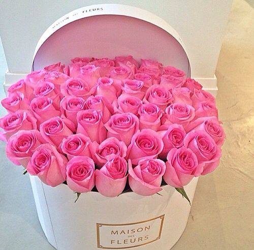 26 best roses images on Pinterest | Beautiful flowers, Flower ...