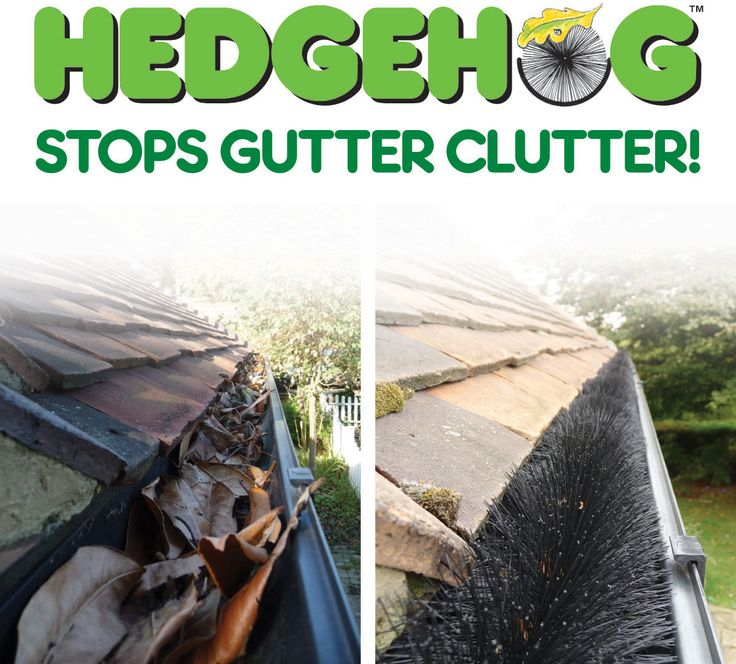 Hedgehog gutter brush available at http://www.drainagesuperstore.co.uk