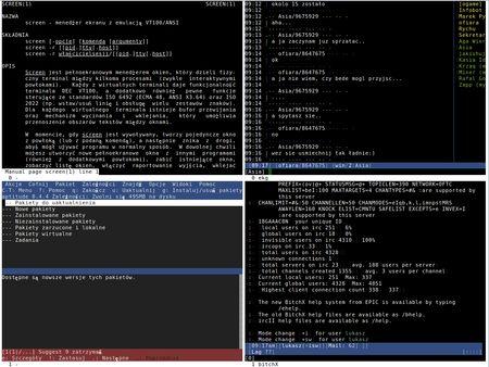 GNU Screen  http://polishlinux.org/howtos/screen-tips-tricks/