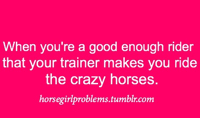 yep.: Equestrian Understands, Equestrian 3 3, Horses, Equine Life, Falls Every Time, Cowgirl Lifestyle, 3 3 Equestrian, Amazing Jumpers, Equestrian Life 3