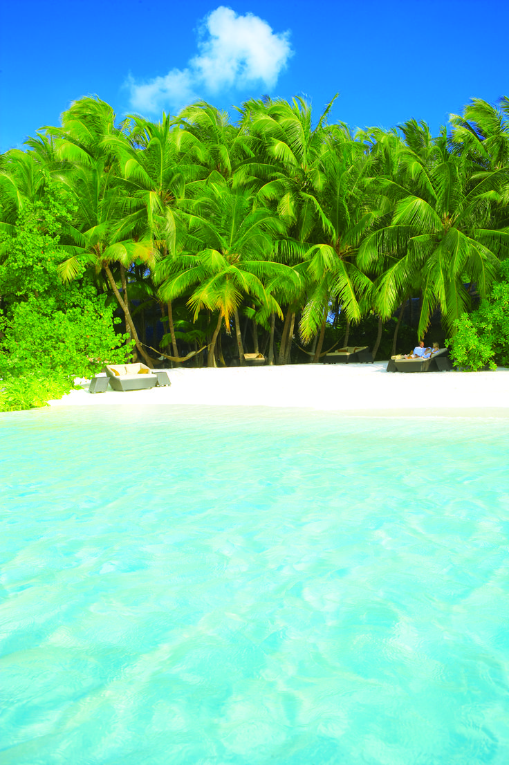 Palm Garden by the Reef...Baros, MaldivesDreams, Summer Beach, Baroness, Travel, Places, Beach Vacations, Palms Gardens, Paradis Islands, Maldives