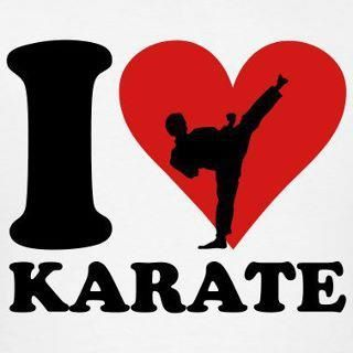 Karate is big in my life. I am working my way to a black belt and I love everything about Karate.