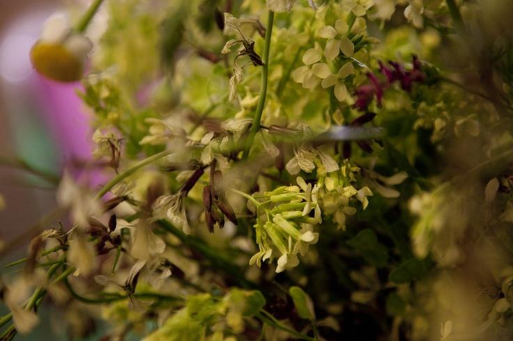 Flores de la decoración cata de vino Cadena Ser por alcoper concept.