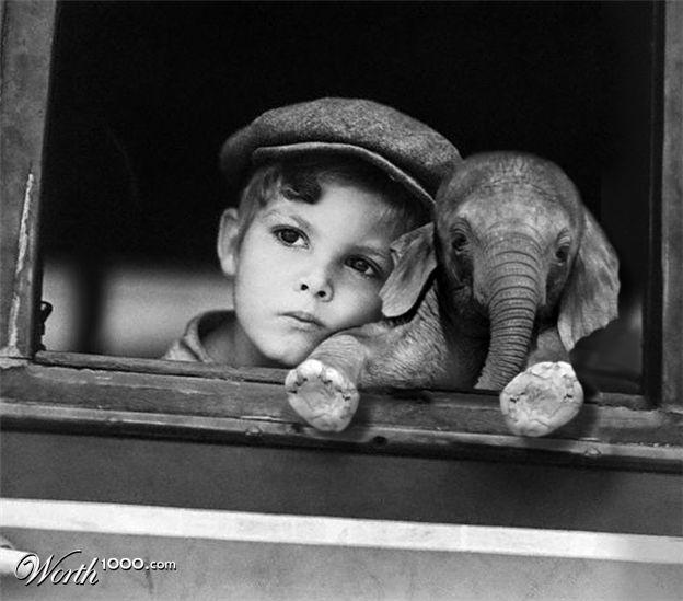 baby elephants make my heart melt<3: Picture, Sweet, Best Friends, Baby Elephants, So Cute, Pet, Boys, Photo, Kid