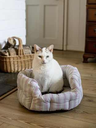 Cat bed £30 Ochre and Ocre