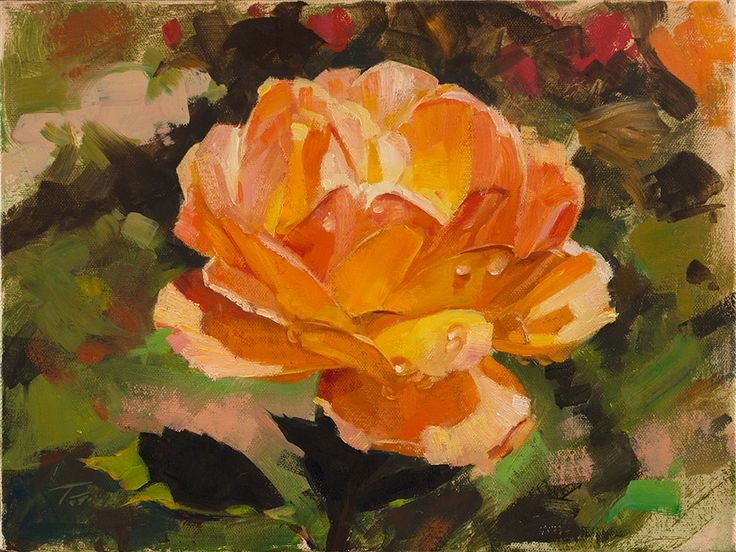 "Morning Rose, oil on canvas, 9""x12"" Private Collection #patricksaunders #patricksaundersfineart #patricksaundersfinearts #saundersfinearts #rosepainting #rose #floral #floralpainting #orangerose #oilpainting #floralpainter #realistpainting #realistpainter"