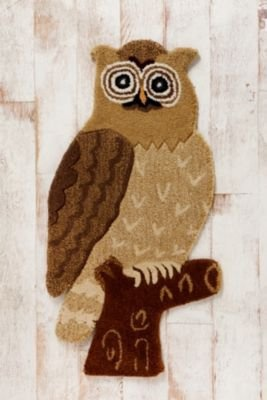 1000 Images About Owl Rug On Pinterest