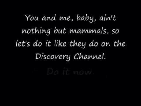 The Bad Touch / Bloodhound Gang. I know every word to this song haha