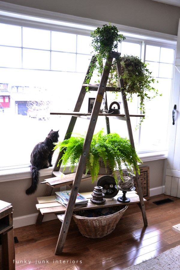 Alors, ça doit coûter une petite fortune ce beau porte plante! vite chérie , donne-moi l'adresse du magasin que j'envoie le concubin le chercher.