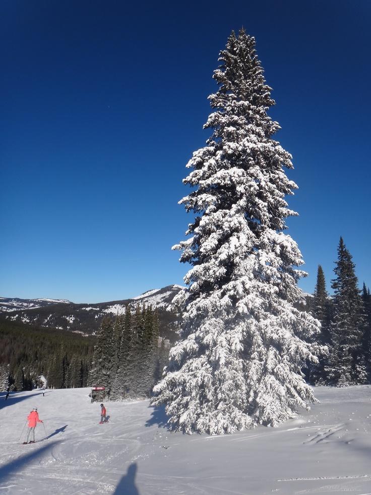 Skiing in Colorado!!