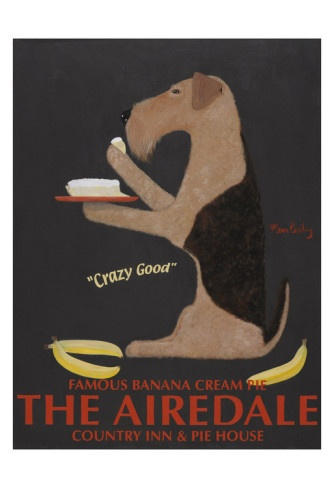 The Airedale Limited Edition
