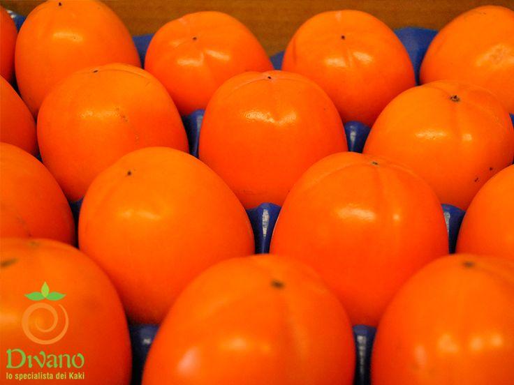 Rojo brillante Persimmons packed in cartboard. Info: www.divanosrl.it/en Kaki Rojo brillante confezionati in cartone e pronti per la consegna. Info: www.divanosrl.it