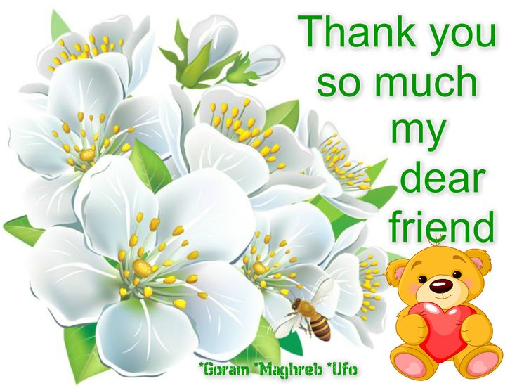 Image Result For Thank You Messages