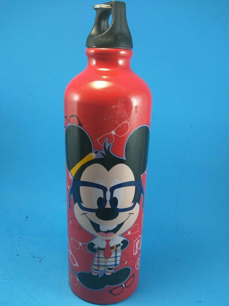 Disney Aluminum Thermos Water Bottle Nerds Mickey & Minnie Let's Nerd Out