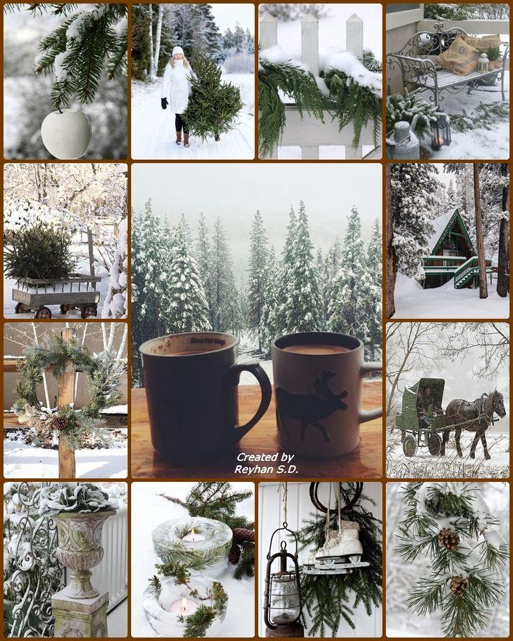 '' Winter Green '' by Reyhan Seran Dursun