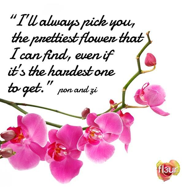 Quotes About Bouquets Of Flowers: 208 Best Images About Flower Quotes On Pinterest