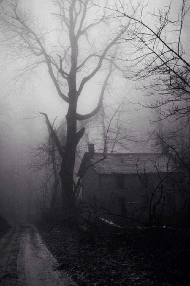 Do not get lost in the foggy night.