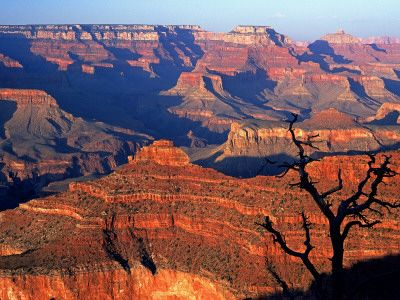Grand Canyon from South Rim Near Yavapai Point, Grand Canyon National Park, Arizona // By David Tomlinson