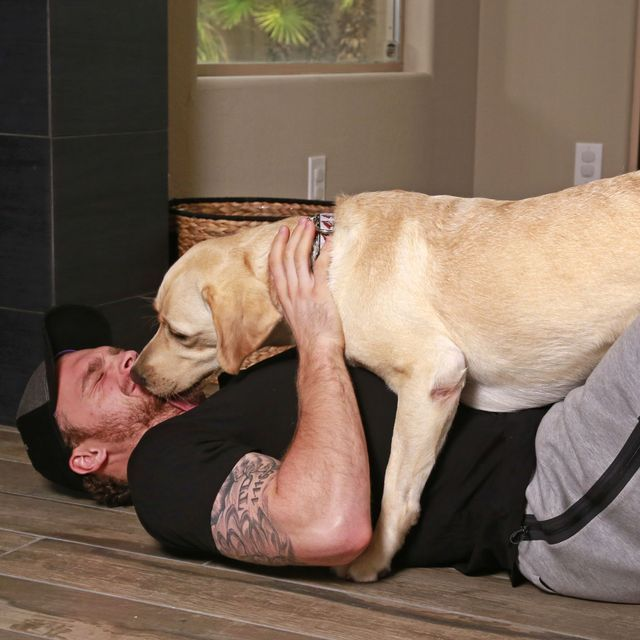"""♥..♥ As Arizona winger Max Domi begins his first NHL season, he's adjusting to the pro life with a diabetic-alert dog. """" Orion, Max Domi's diabetic-alert dog, """"works for love,"""" the Coyotes rookie says. """""""