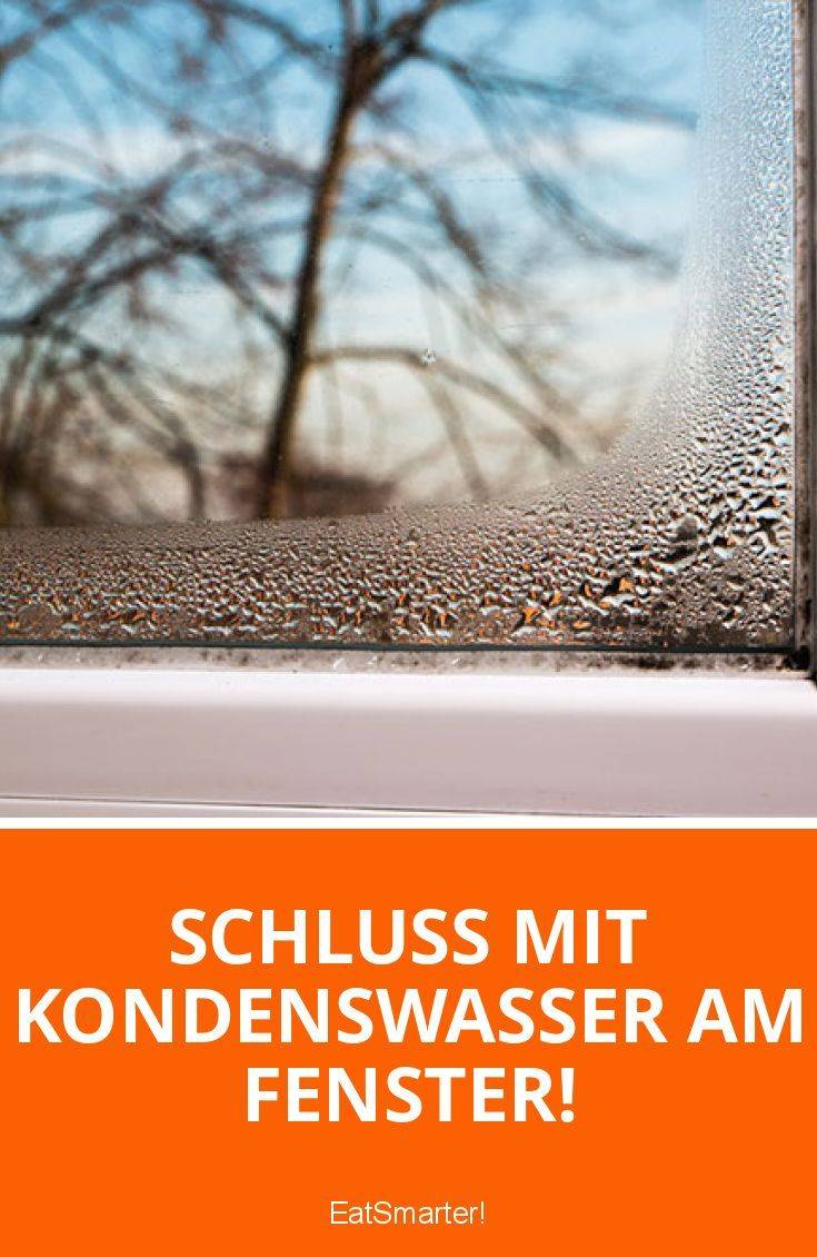 Schluss mit Kondenswasser am Fenster! | eatsmarter.de