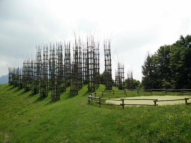 La Cattedrale Vegetale sarà un ponte umanitario tra Bergamo e il Nepal