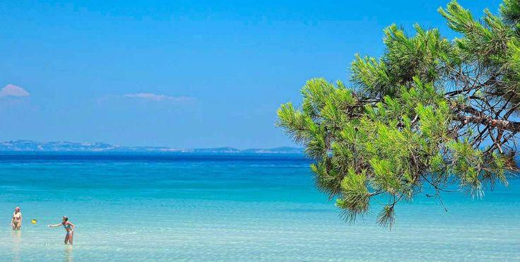Παραλία Βουρβουρού Αυτή η παραλία θα μπορούσε να βρίσκεται και στη Χαβάη. Στην πραγματικότητα βρίσκεται στη Χαλκιδική.