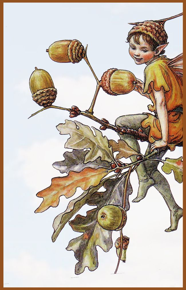 The Song Of The Acorn Fairy, an autumn Flower Fairy poem:  To English folk the mighty oak  Is England's noblest tree;  Its hard-grained wood is strong and good  As English hearts can be.