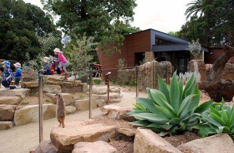 Growing Wild - Melbourne Zoo, Architecture by Clarke Hopkins Clarke, landscape designed by Zoe Metherell @ Jeavons LA.
