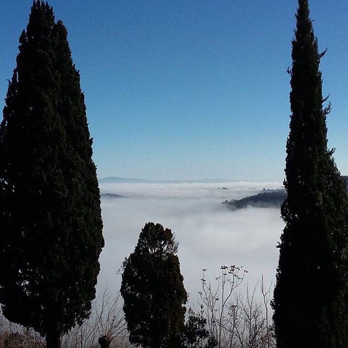 È l'incertezza che affascina. La nebbia rende le cose meravigliose. @elisapratesi87  @capitanocollection  Val d'Orcia