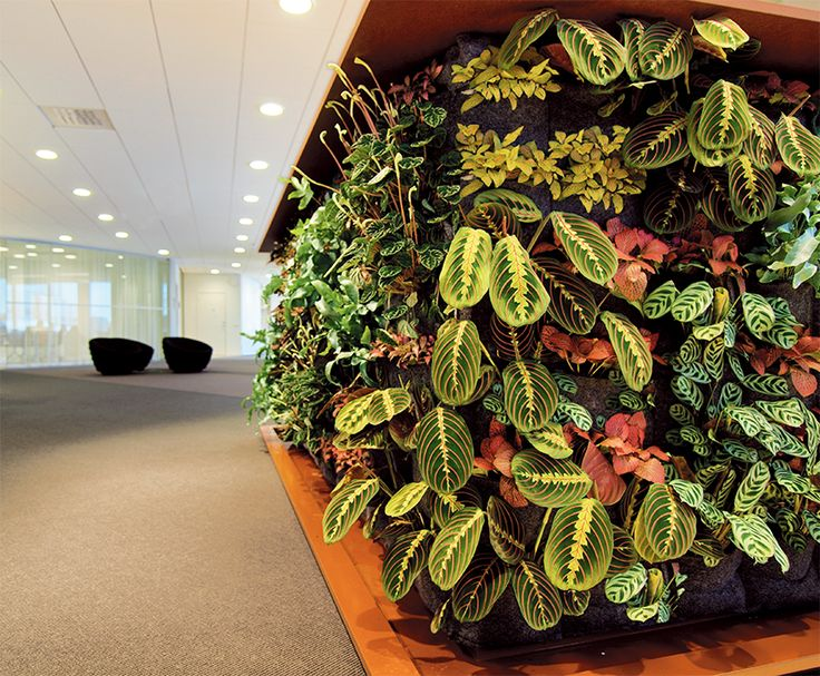 Plant installation in reception counter at the head office for Postkodlotteriet, Stockholm.