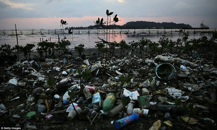 Rio Olympics pollution problem worsens as raw sewage pours into ...