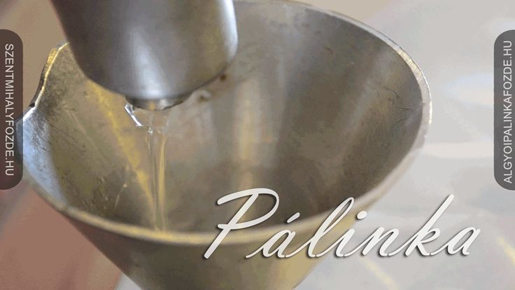 Fotó itt: Palinka & #cinemagraphs - Google Fotók